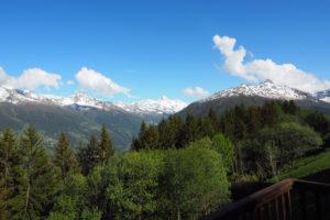 Chalet La Pente view
